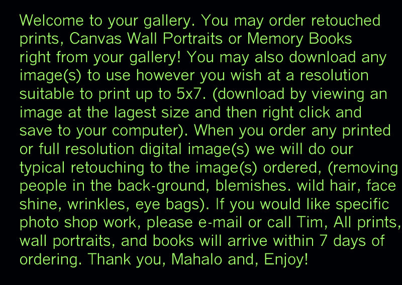 gallery welcome copy