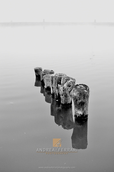 Poles in the water
