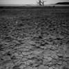 Salton Sea-125