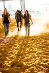16348-event-Equestrian Team -8276