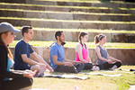 16393-Yoga on the lawn--9611