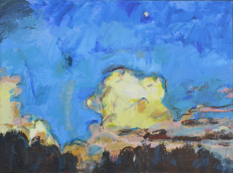 "Moon Over NC Zoo, Acrylic on Canvas, 36""h 48""w, 2015"