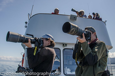 Our photo workshop members ready to shoot the whales.