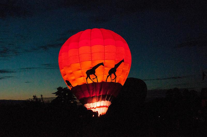 Safari Balloon Glow