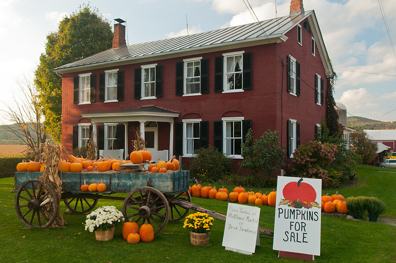 2008Sep30 Farmstand 001 of 008 D300