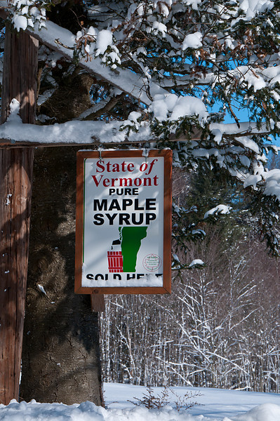 Maple Syrup For Sale_