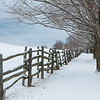Winter Fences
