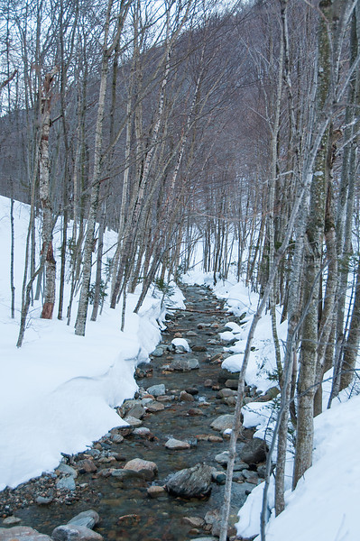 Winter in the Notch_