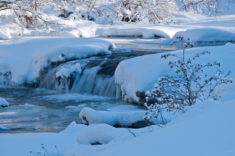 Brewster River Winter