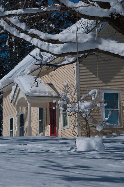 Snowy Tree Swing_