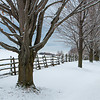 Winter Fences 2