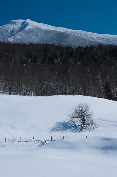 Snowy Fields 2