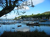 Tarbert (Loch Fyne) harbour.<br /> 4th August 2005.