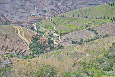 Terrain of the Douro River Valley