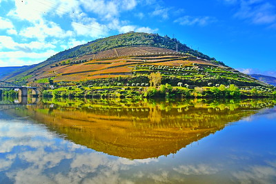 Reflection on the Douro
