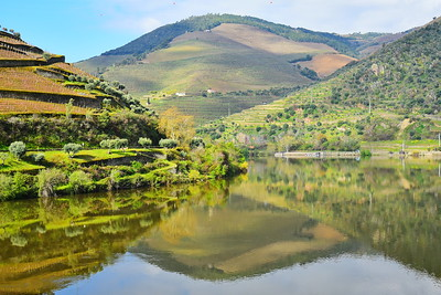 Douro River Reflections