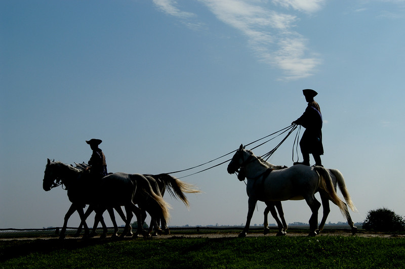 "Hungary, ""Chicos"" giving a riding demonstration at a farm in the ""Puszta"", near Kalocsa"