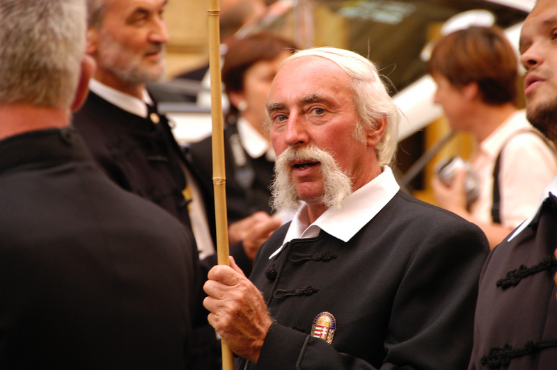 Man in St. Stephen's Day Parade, Budapest
