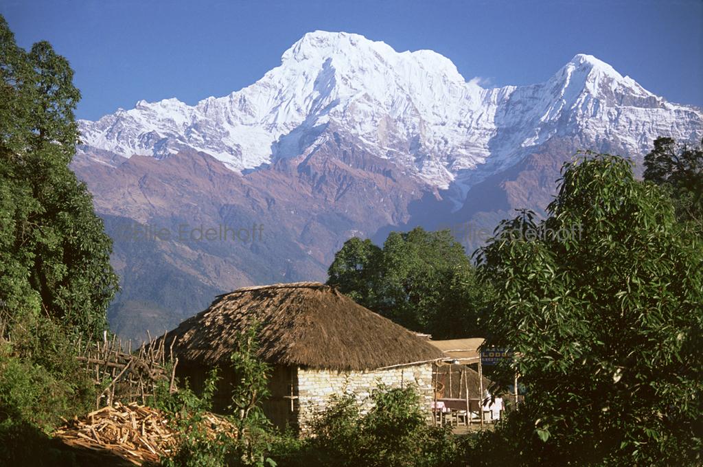 Annapurna Majesty - Annapurna Region, Nepal
