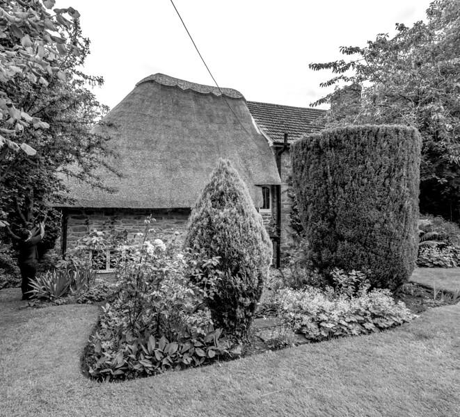 Garden, Flore