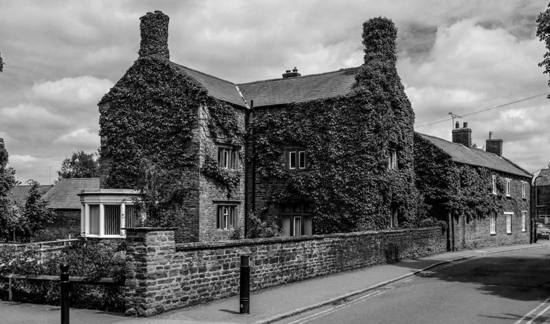 Virginia Creeper, West Street, Moulton, Northamptonshire