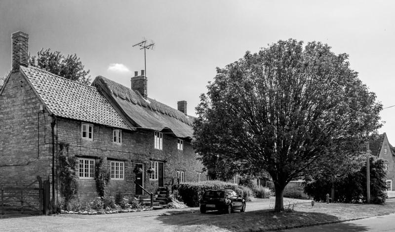 Tree, High Street, Yardley Hastings, Northamptonshire