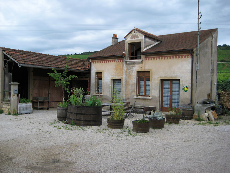 A little house in Vosne Romanee