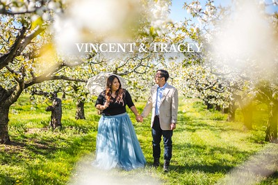 Vincent & Tracey
