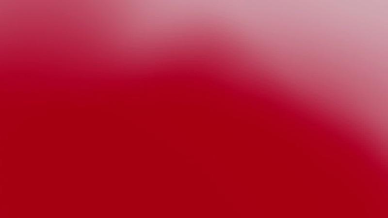 This Valentines Day | Heart Vinegaroon