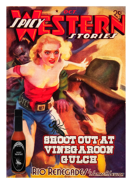 Shoot Out At Vinegaroon Gulch | Spicy Western Stories