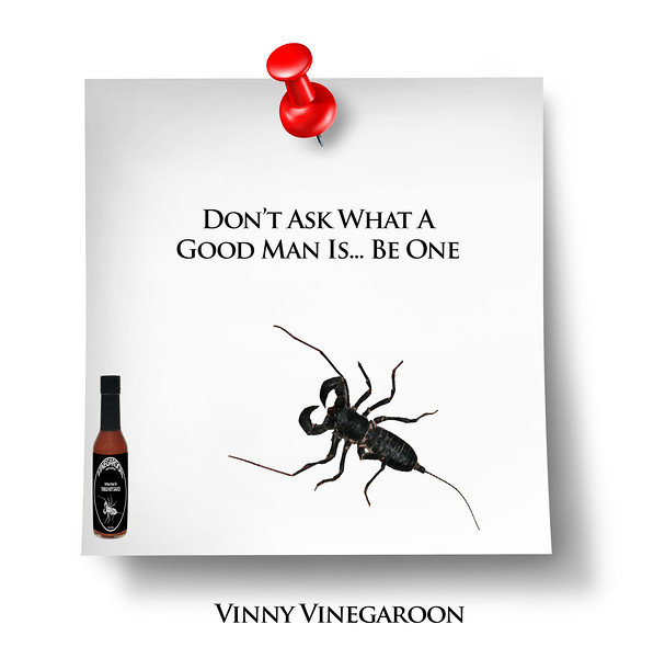 Vinegaroon Table Hot Sauce   A New American Classic