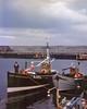 William Stephen at Harbour on Violet FR451_E1