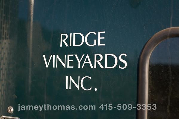 90930_Ridge_Harvest_176