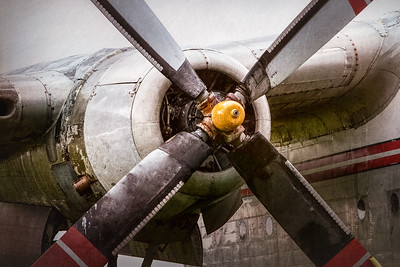 Radial Engine and Prop