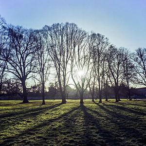 2006 : Burghley Park