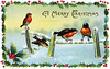 "A 1913 Christmas card illustration of winter song birds surrounded by a frame of holly. The ""XLarge"" and smaller photo sizes are FREE for any personal use (under a <a href=""http://creativecommons.org/licenses/by-nc-nd/2.0/"">Creative Commons</a> license). Click the ""Buy"" or shopping cart button (above the image) to purchase prints or downloads. PRICING: 1-megapixel Personal downloads are $1.89; 4-megapixel and ""Original"" (9-megapixel) Personal downloads are $4.95; 1-megapixel Commercial downloads are $9.95, 4-megapixel and ""Original"" (9-megapixel) Commercial downloads are $49.95; NOTE: Free personal use requires a photo credit to my company, ''<a href=""http://www.tssphoto.com/"">The Stock Solution</a>'', and link to that Web site if you use the image on a personal Web site. Do not redistribute digital copies via email -- instead, please link to this web page. Be sure to see all our <a href=""http://roycebair.smugmug.com/Vintage-Collections"">Vintage Collections</a>."