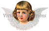 A vintage angel icon - illustration surrounded by feathered wings - circa 1887