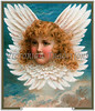 A vintage angel portrait surrounded by feathered wings - circa 1890