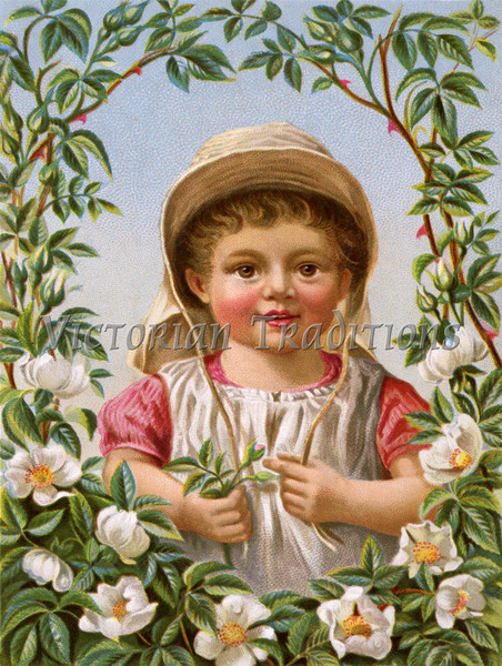 """Little girl framed within her rose garden - a circa 1890 vintage illustration. This image is available in 1-megapixel, 4-megapixel, and the """"Original"""" download sizes. (To purchase prints or downloads, click on the """"Buy"""" or shopping cart button above the image; then choose """"This Photo"""", followed by clicking on the 'Prints', 'Merchandise', or 'Downloads' tab.)"""
