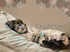 "Little girl sleeping with her doll - a vintage, hand-tinted photograph. NOTE: This image is only available in the 1-megapixel size (do not waste your money on the 4-megapixel or ""Original"" size, as they are still only 1-megapixel when opened :)"