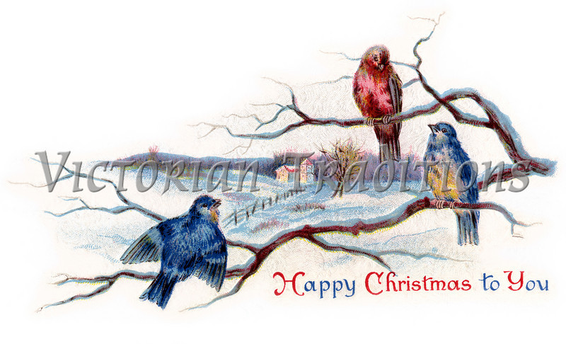 "Winter Songbirds - a 1919 vintage Christmas illustration. Your purchased prints & downloads will NOT have ""Victorian Traditions"" watermark."