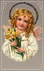 """Little angel holding Easter daffodils - a vintage greeting card illustration, circa 1910. (To purchase prints or downloads, click on the """"Buy"""" or shopping cart button above the image; then choose """"This Photo"""", followed by clicking on the 'Prints', 'Merchandise', or 'Downloads' tab.)  NOTE: the largest available download for this image is currently only 1 megapixel (low-resolution or 3 megabytes)."""