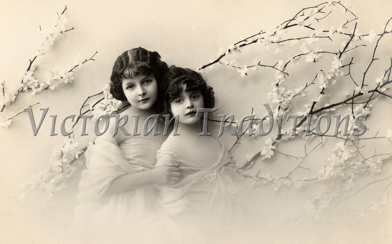 "A vintage Valentine portrait of two young sisters (circa 1900). This is a very Victorian style photograph. with soft vignetting around the edges, and  man-made cherry blossom branches framing the subjects. Soft shadows from the branches, onto the background indicated ""north light"" (natural skylight from the north) studio lighting, typical of the era. Their chiffon dresses add to the style. Large-format negative (8x10) retouching has smoothed out all the skin blemishes - also typical of the era."