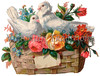 Vintage Valentine illustration of love birds in a basket - circa 1890
