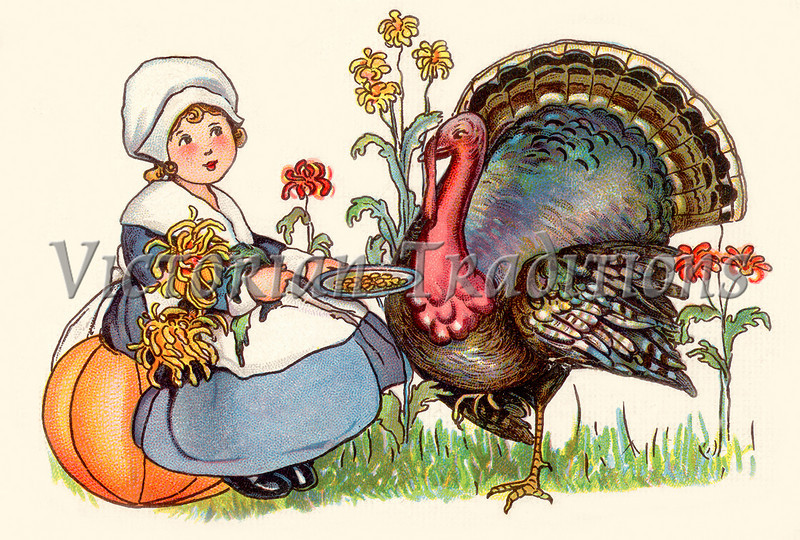 """First Thanksgiving - Pilgrim girl with a tom turkey - a circa 1910 vintage illustration. Your purchased prints & downloads will NOT have the """"Victorian Traditions"""" watermark."""