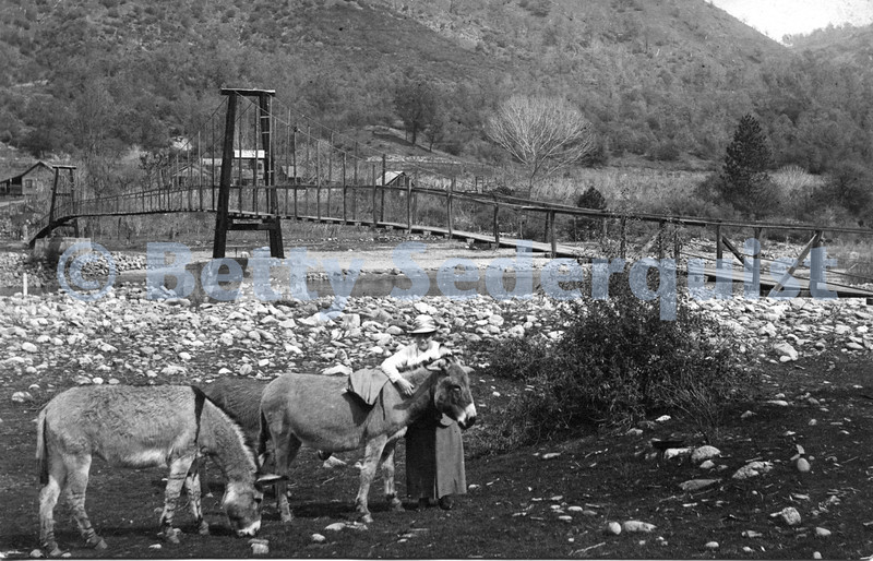 Nancy Vernon and Donkeys with Coloma Footbridge