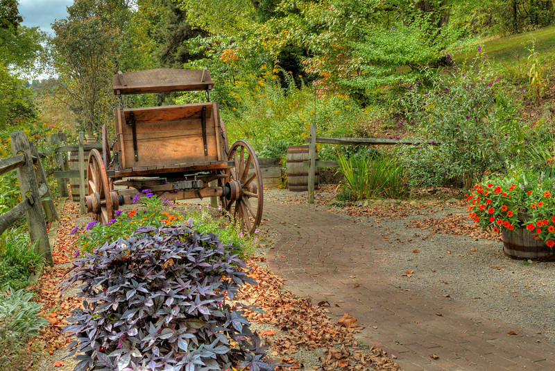 Old Wagon In A Garden