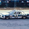 Cale Yarborough May 1980 Mason-Dixon 500