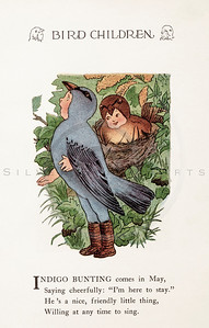 Vintage 1900s Color Illustration of Indigo Bunting Bird Children from BIRD CHILDREN by Elizabeth Gorden.  The natural patina, age-toning, imperfections, and old paper antiquing of this vintage 20th century illustration are preserved in this image.