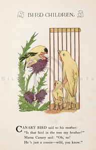 Vintage 1900s Color Illustration of Canary Bird Children from BIRD CHILDREN by Elizabeth Gorden.  The natural patina, age-toning, imperfections, and old paper antiquing of this vintage 20th century illustration are preserved in this image.